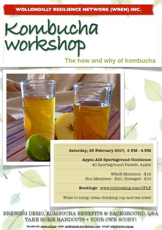 Kombucha Workshop Appin 187 Wollondilly Shire Council